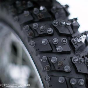 Harley-Davidson-Street-Ice-